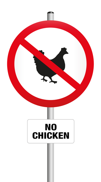 Are Chickens Allowed In Your Town?