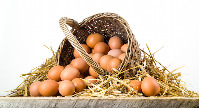 Chicken eggs in basket isolated