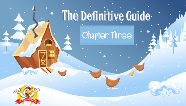 Chapter Three How To Feed Your Chickens Correctly During Winter