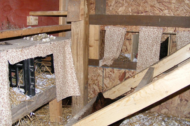 Curtains for Nest Box