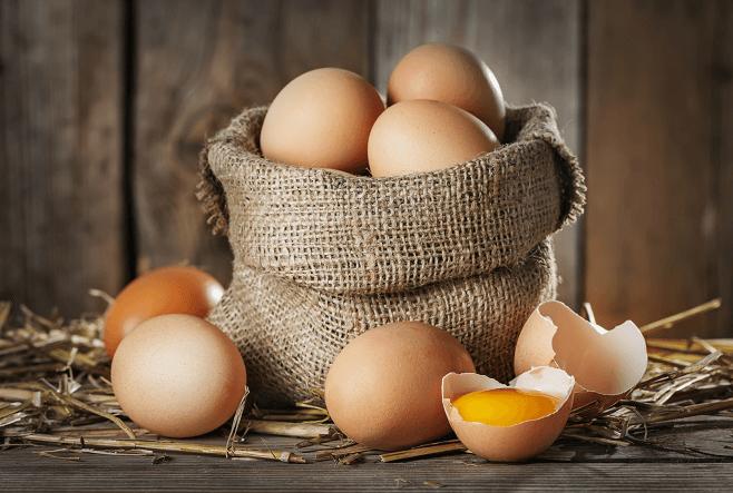 Raising Chickens for Eggs