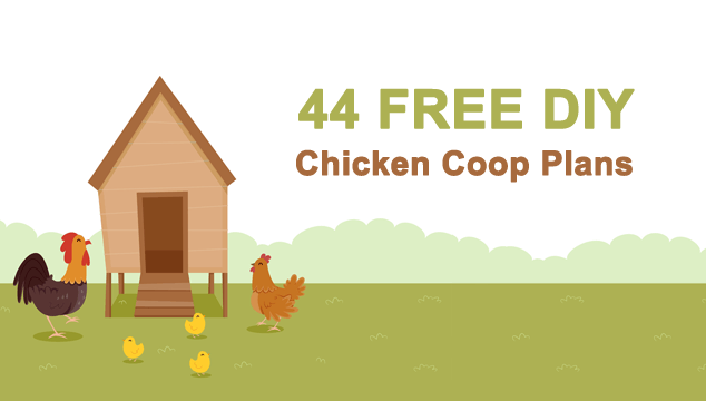 44 Beautiful DIY Chicken Coop Plans You Can Actually Build