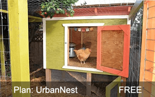 get this coop  urban nest