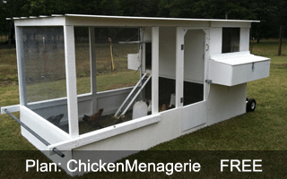 ChickenMenagerie