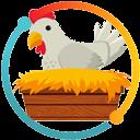 13 DIY Nesting Plans