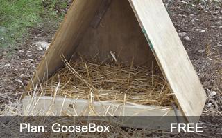 GooseBox