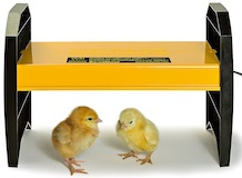 Brinsea EcoGlow Brooder for Chicks