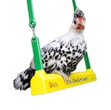 The Chicken Swing - Chicken Toy