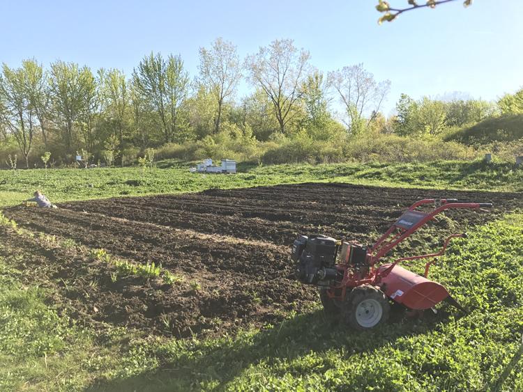 garden tilling