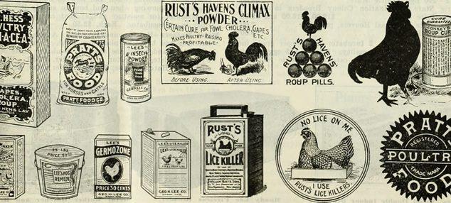 chicken lice prevention ads