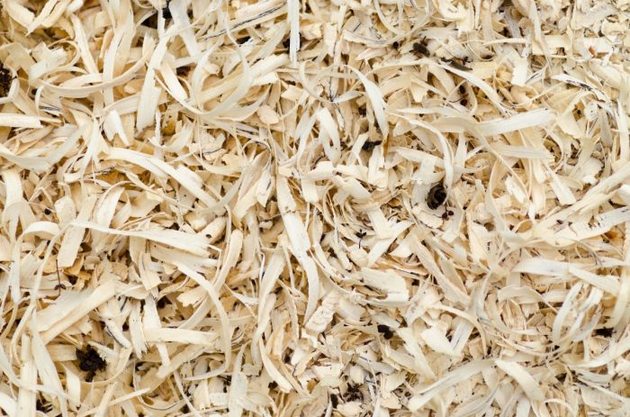 chicken coop shavings bedding