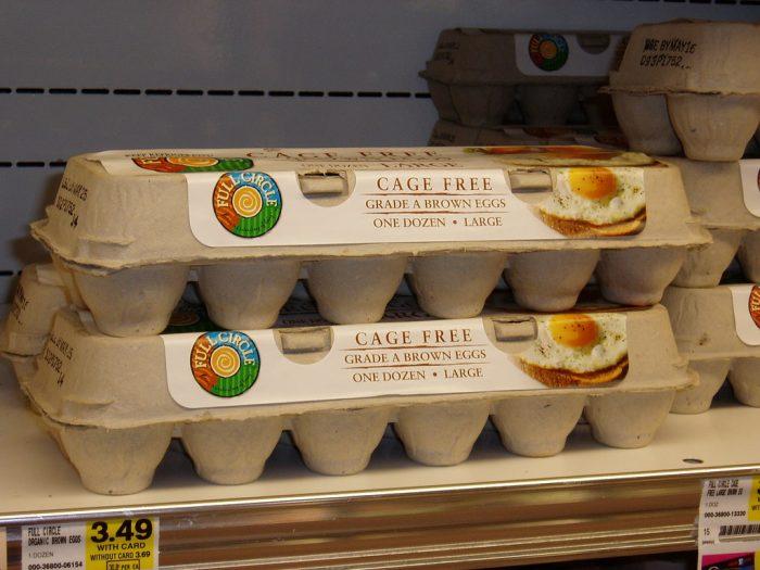 cage free eggs vs free range eggs