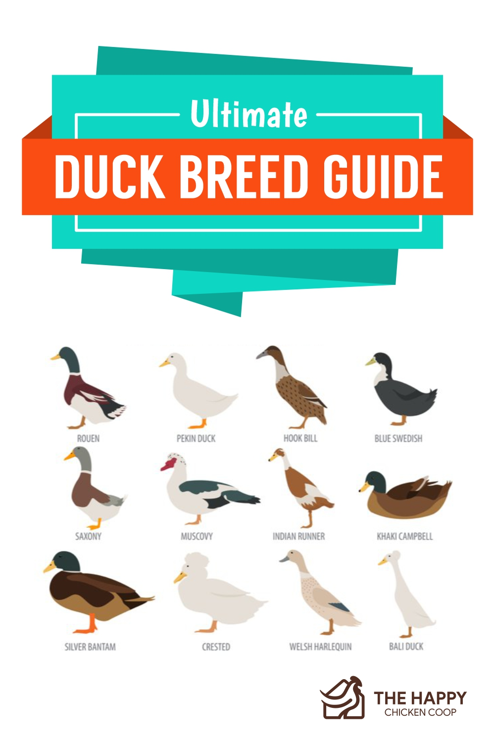 Ultimate Duck Breed Guide