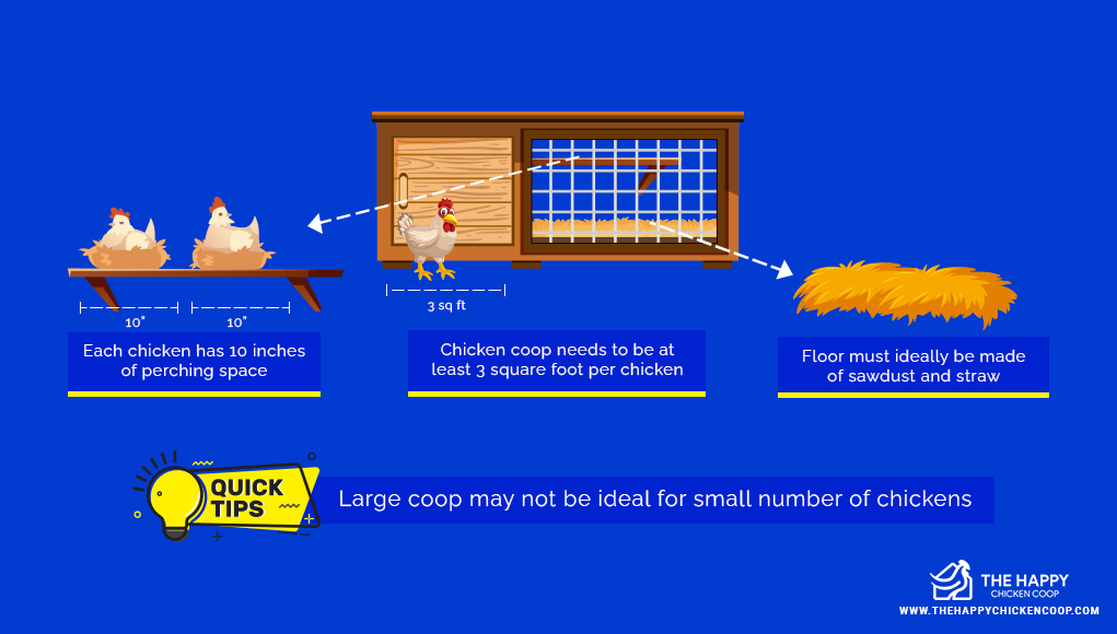 how much room do chickens need