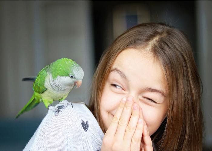 pet birds for children